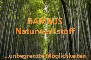 Bambus Parkett aus nachhaltigem Naturbaustoff natürliches Bauen und Wohnen
