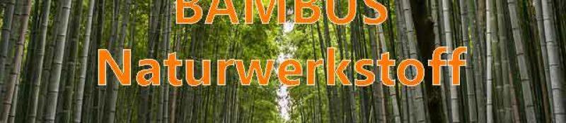 Bambus nachhaltiger Naturbaustoff