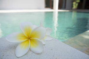 Swimmingpool-im-Garten ausführliche Informationen