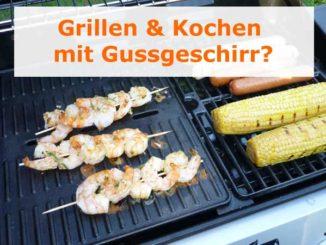 Dutch Oven Gusstopf Outdoorgrillen und kochen
